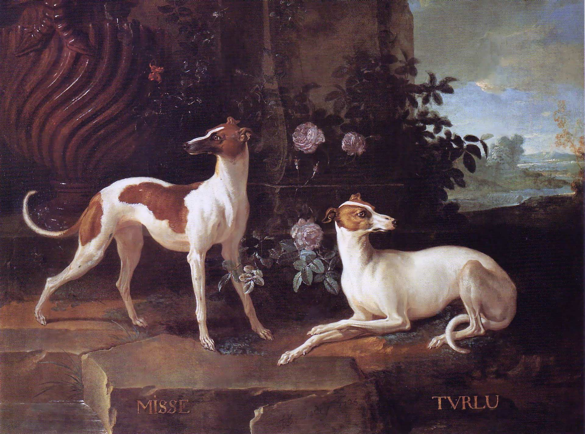 Misse and Turlu, Two Greyhounds Belonging to Louis XV by Jean-Batiste Oudry